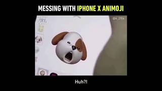 Messing With IPhone X Animoji Funny Dog Wants Beef Jerky