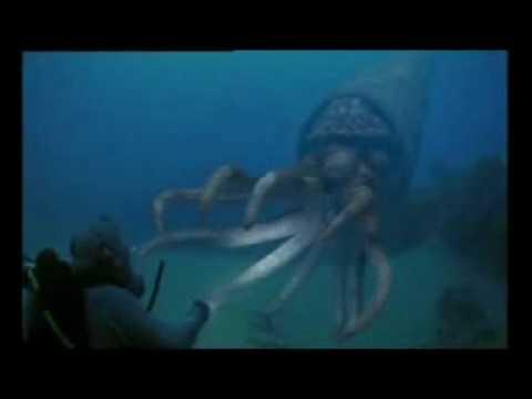 Monstruos Marinos 1 - Parte 2 de 3