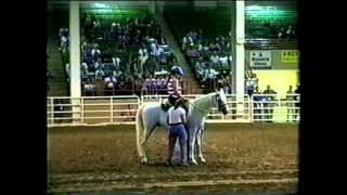getlinkyoutube.com-Arabian Celebration, black stallion, horse helps girl in wheelchair, inspiring.