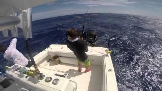 getlinkyoutube.com-Reefill Fishing Mahi Mahi - Sea Vee Boats - GoPro HD