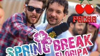 getlinkyoutube.com-SPRING BREAK FLORIPA 2013 -  Plantão PACHA