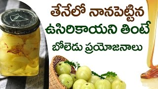 getlinkyoutube.com-Amazing Health Benefits Of Amla Soaked In Honey During WINTER | Indian Gooseberry | Health Tips