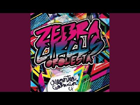 Cierra La Puerta de Zebra Circus Letra y Video