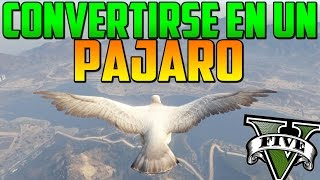 getlinkyoutube.com-INCREÍBLE! COMO CONVERTIRSE EN UN PÁJARO!! - MISTERIOS GTA 5 PS4 - EASTER EGG GTA 5 PS4