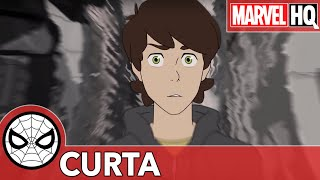 Observação | Marvel Spider-Man