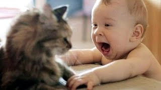 Cat Playing With Baby   Best Of Cute Cats Love Babies Compilation