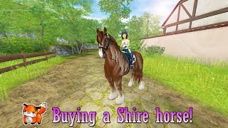 getlinkyoutube.com-Buying a SHIRE horse ♡ Star Stable