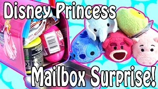 getlinkyoutube.com-Disney Princess Mailbox Surprise + Tsum Tsum - Toy Story Hello Kitty Mashems Frozen Zelfs Sonic