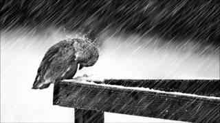 "getlinkyoutube.com-""Cold"" - Jorge Méndez (Sad Piano & Violin Instrumental)"