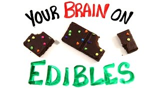 Your Brain On Edible Marijuana width=