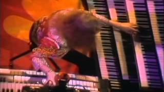Trace - Surrender (Live at Muziek Winkel, 1977)