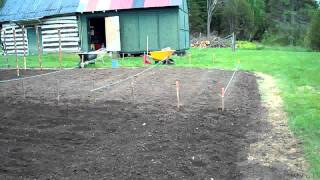 Starting to Plant the seeds Heirloom Organic Vegetable Garden