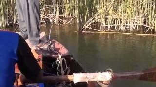 صيد السمك في نهر ديالى