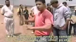 getlinkyoutube.com-Chien dangereux au maroc Partie 1