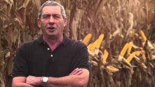 getlinkyoutube.com-OGM, IL PARADOSSO ITALIANO: IMPORTARE SI', COLTIVARE NO