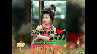 beautiful Good morning status flower ll good morning status | New whatsapp status YouTube