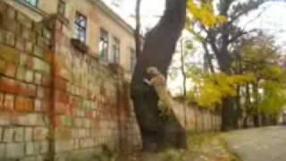 getlinkyoutube.com-TreT - PARKOUR DOG FROM UKRAINE (TreT-Style)