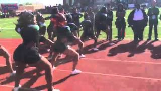 getlinkyoutube.com-Woodrow Wilson High School Tigers - Green And White - Come Get You Some Cheer