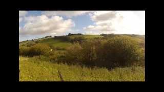 getlinkyoutube.com-Pheasant shooting in Wales