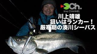 getlinkyoutube.com-川上靖雄 狙いはランカー!厳寒期の湊川シーバス