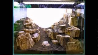 getlinkyoutube.com-【アクアフォレスト】60×45×45 木化石山岳レイアウト
