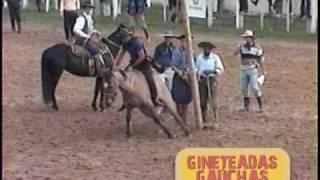 getlinkyoutube.com-DVD Ginetadas Gaúchas - Wagner Medina (13de14)-Tombos e Boleadas