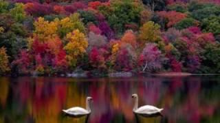 getlinkyoutube.com-Surah Rahman with Urdu Translation Part 1 of 2