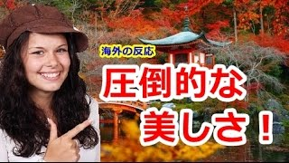 getlinkyoutube.com-【海外の反応】日本の世界遺産の四季の変化が話題に「地球にあるとは思えない!」