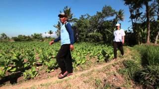 Kamarudin, di Tengah Ironi Negara Agraris yang Minim Petani Muda