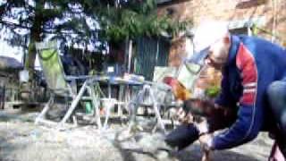 getlinkyoutube.com-yellow shamo training.avi