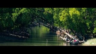 getlinkyoutube.com-Sundarban Canal tour Part 1 Sundarban Bangadesh
