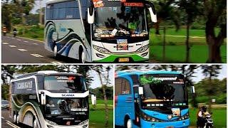 getlinkyoutube.com-Satria Muda, Mustika Holiday, B16, Sinar Jaya, Efisiensi | Dapat Telolet Mustika Holiday