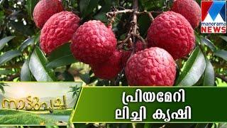 getlinkyoutube.com-Nattupacha 17-07-2016 | Manorama News