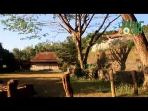 Pertanian Sistem Permaculture di Bumi Langit Institute Bukit Imogiri, Bantul, DIY