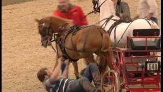 getlinkyoutube.com-Runaway Ponies at HOYS '08