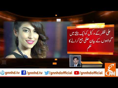 Meesha Shafi, Ali Zafar case hearing in SC