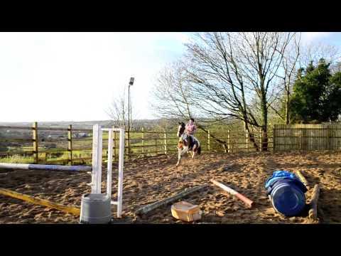 Murphy jumping :D