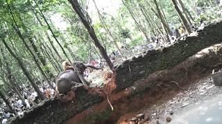 getlinkyoutube.com-Elephant Attack - Erattupetta