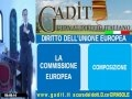 4.1. La Commissione europea.wmv