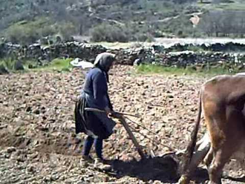 LUISA ARANDO.Las Torres de Aliste abril de 2009.Gaita.