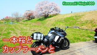 getlinkyoutube.com-[ラーツー]一本桜と山専ボトルとカップラーメンと[Ninja1000]