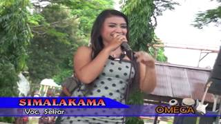 getlinkyoutube.com-FULL HD - biduan paling montok goyang BINAL - simalakama || dangdut koplo HOT