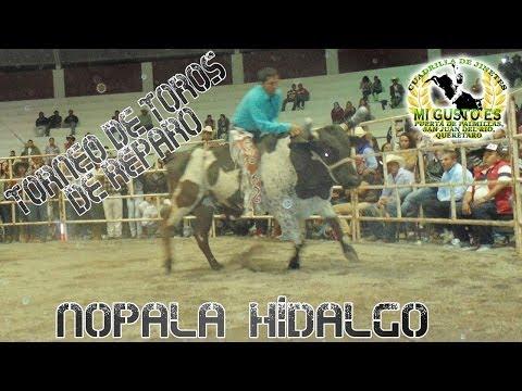 Torneo De Toros De Reparo en Nopala, Hidalgo 2014