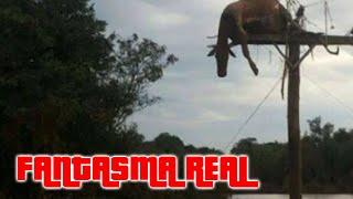 Fantasma real se oculta detras de un poste | videos reales captados por camaras