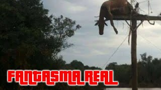 getlinkyoutube.com-Fantasma real se oculta detras de un poste | videos reales captados por camaras