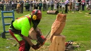 Chainsaw carving for utube.mpg