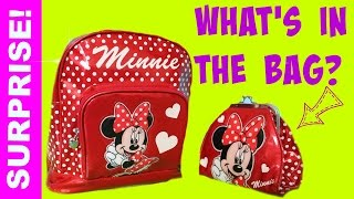 getlinkyoutube.com-shopkins blind bags surprise backpack doc mcstuffins disney princess minnie