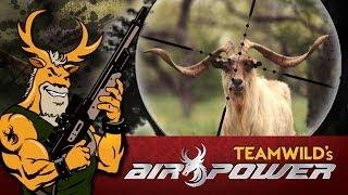 EXTREME Airgun - Hunting Catalina Goats