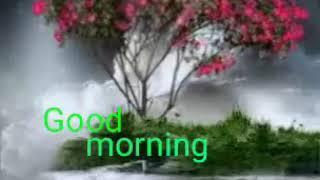 Good Morning GIF whatsaap status