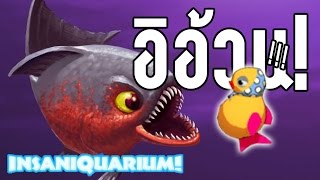 getlinkyoutube.com-Insaniquarium Deluxe - อีอ้วน!